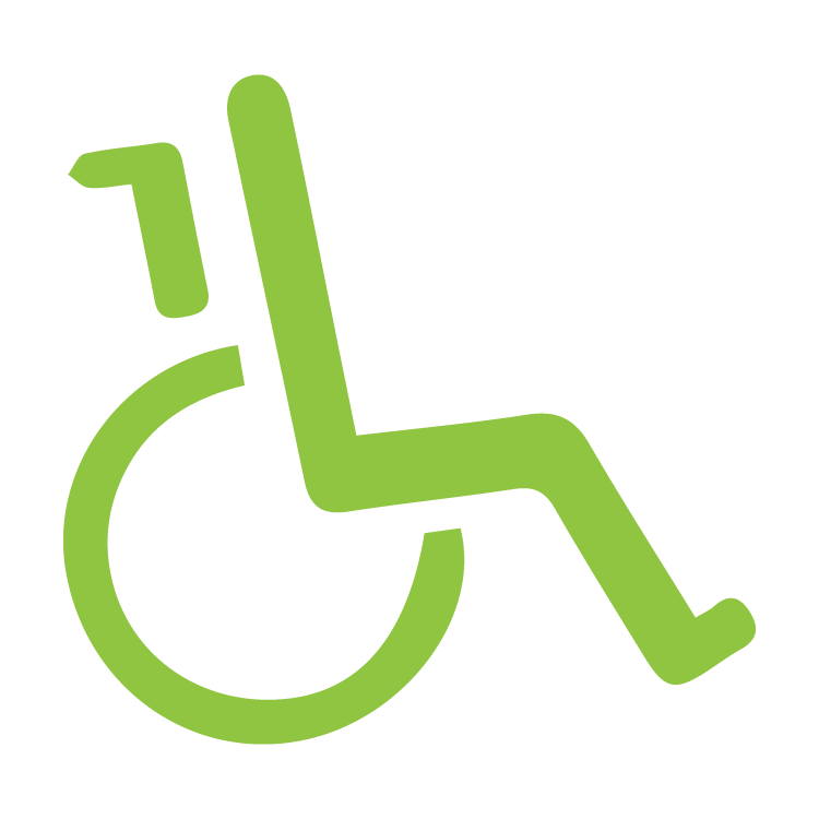 icon-disability